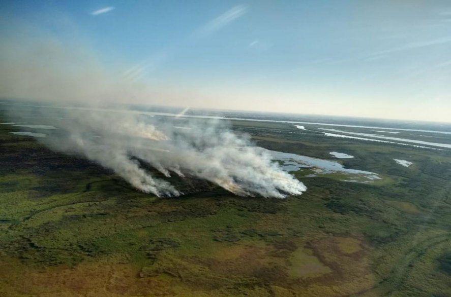 Declaran la emergencia ambiental por los incendios en el Delta del Paraná
